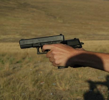 בני טל - רישיון נשיאת אקדח