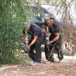 אבטחה אלימה | מאבק בהשתלטות על קרקעות